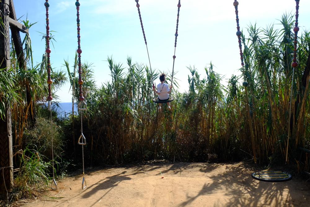 Swing at Safari Bar 2